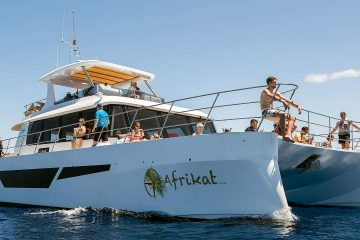 Afrikat boat excursion boat trip