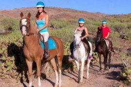horse riding tour gran canaria