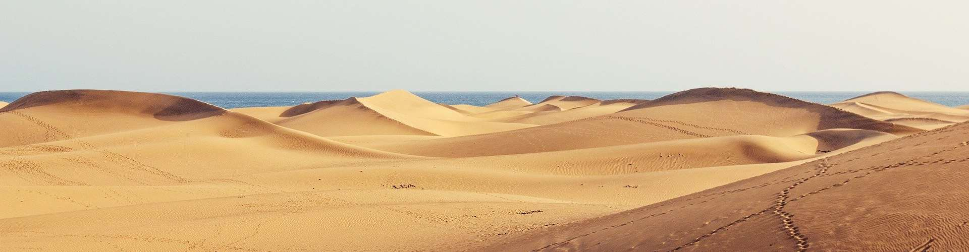 What to do in Maspalomas